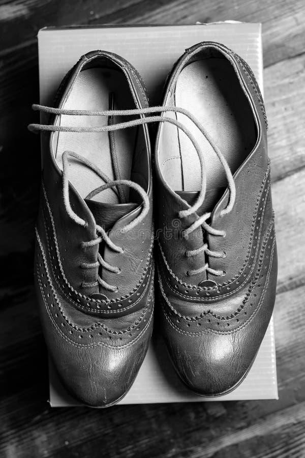 Un paio delle scarpe delle donne immagini stock libere da diritti