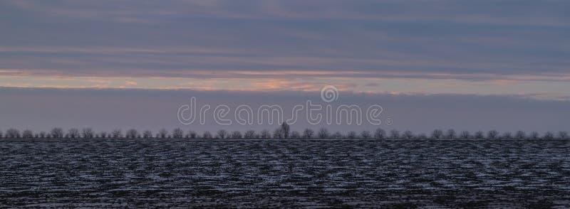 Un paisaje blanco de un terreno que es cubierto en nieve fotografía de archivo libre de regalías