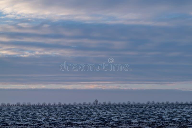 Un paisaje blanco de un terreno que es cubierto en nieve foto de archivo libre de regalías