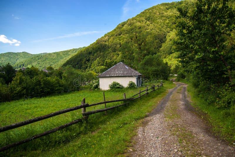 Un paisaje hermoso de la montaña del verano - los Cárpatos imagen de archivo libre de regalías