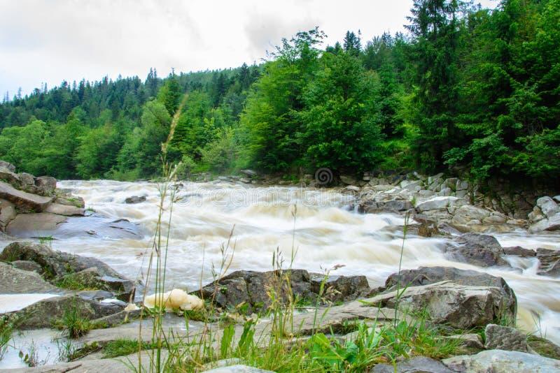 Un paisaje maravilloso en los Cárpatos con un río en el fondo foto de archivo libre de regalías