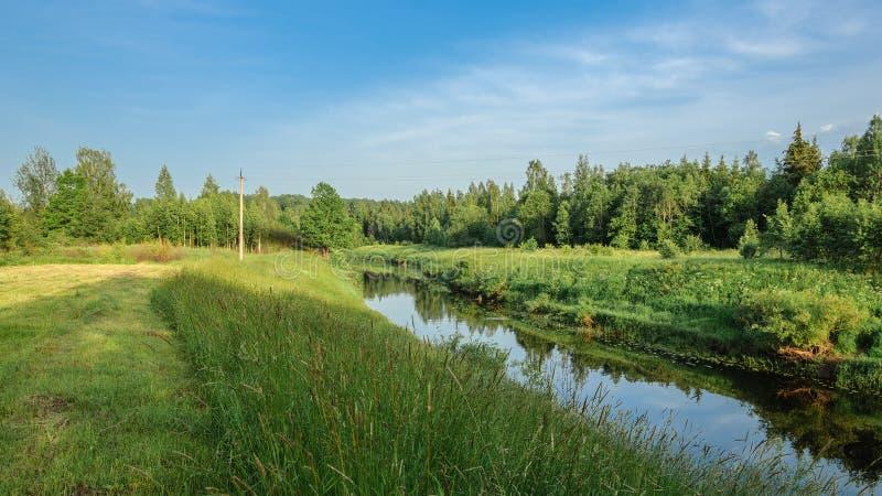 Un paisaje pintoresco del verano Un río estrecho con un prado que se inclina y un bosque denso en altas costas imagenes de archivo