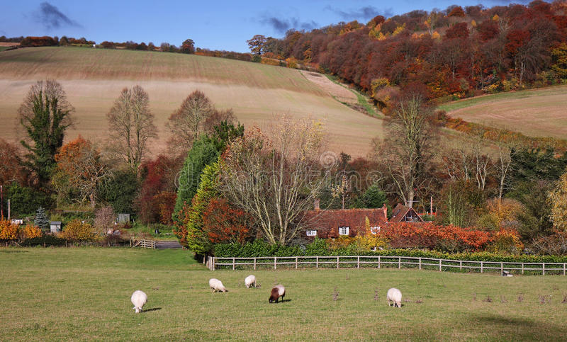 Un paisaje rural inglés en otoño imagen de archivo