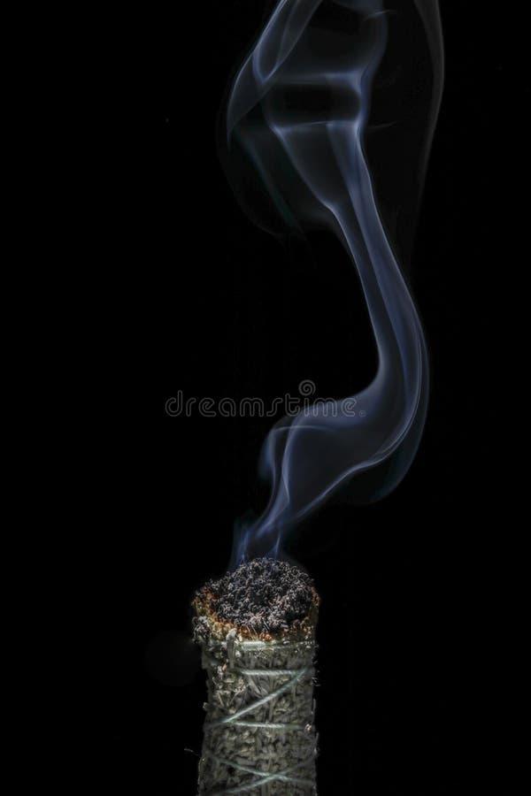 Un palillo del sabio ardiente del búfalo con humo que fluye hermoso en un fondo negro fotografía de archivo libre de regalías