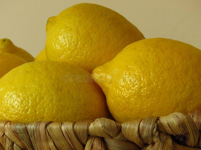 Un panier des citrons jaunes mûrs juteux Riches en bonne santé de fruit tropical de vitamine C photos libres de droits