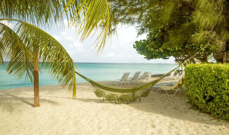 Un panorama di una spiaggia da sette miglia sull'isola di Grand Cayman fotografia stock libera da diritti