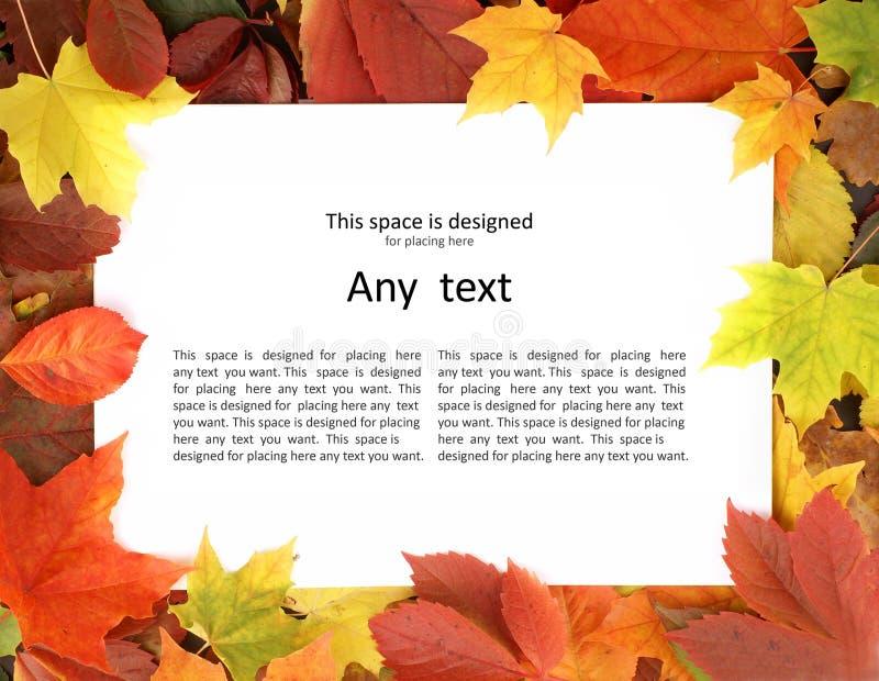 Un papel en blanco que miente en las hojas de otoño caidas foto de archivo
