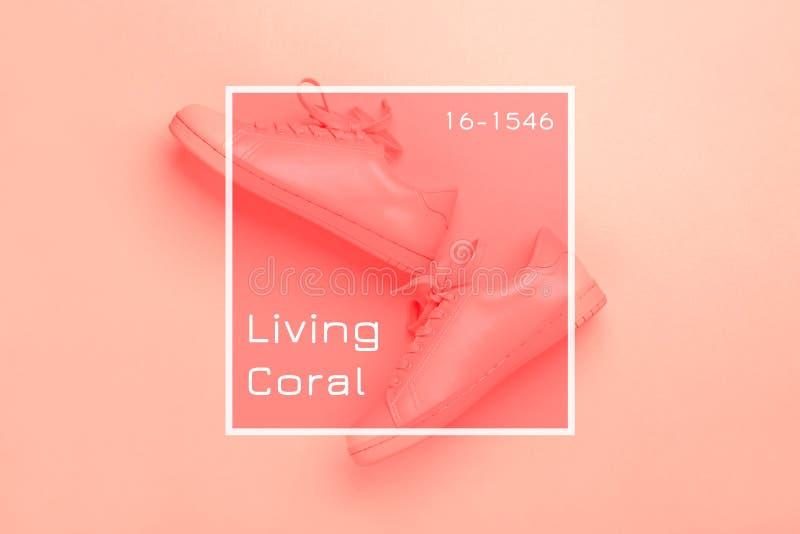 Un par de zapatos coralinos en el fondo coralino fotografía de archivo libre de regalías