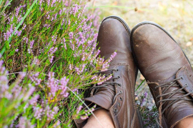 Un par de zapatos de cuero marrones gastados sobre el fondo del campo imagen de archivo