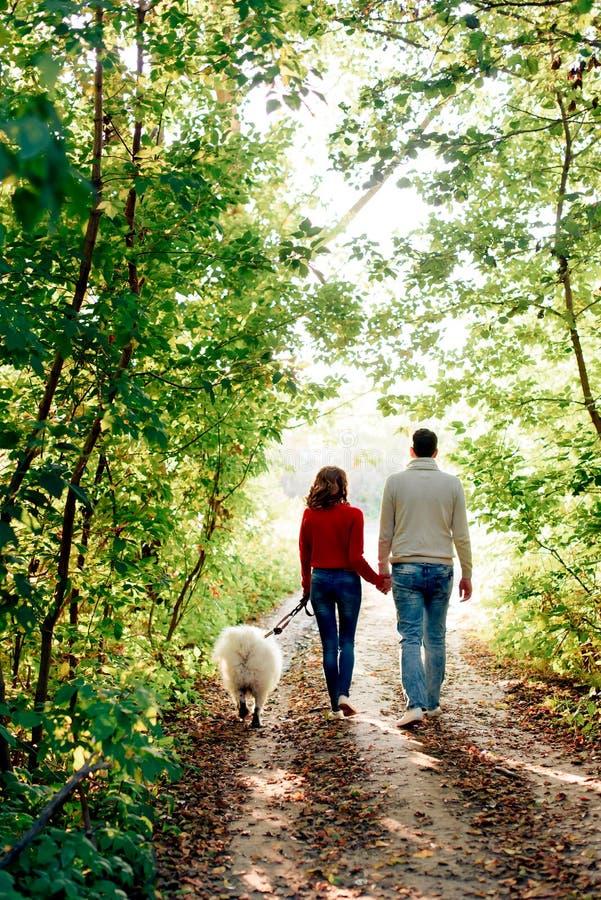 Un par joven con un perro que camina a lo largo del parque del otoño ella está en un suéter rojo que él está en blanco con un per fotos de archivo libres de regalías