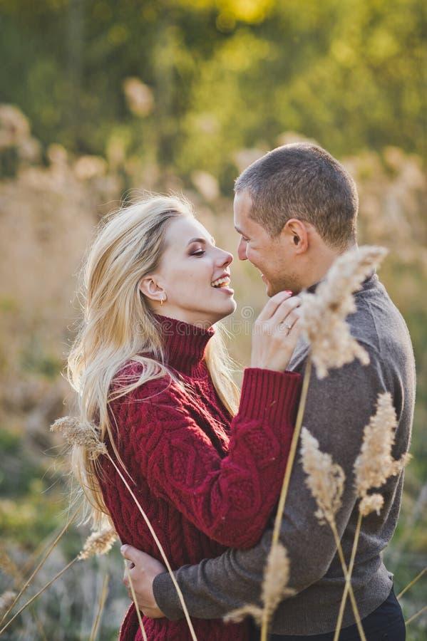 Un par joven en el amor que abraza contra la perspectiva de las cañas 1362 imagen de archivo libre de regalías
