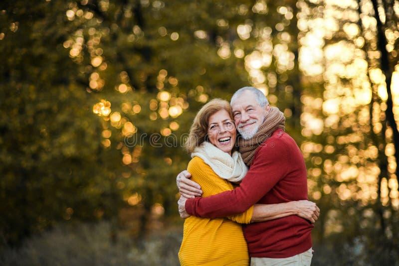 Un par mayor que se coloca en una naturaleza del otoño en la puesta del sol, abrazando Copie el espacio foto de archivo