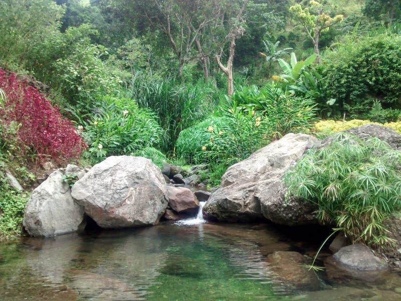 Un paradiso giamaicano immagine stock