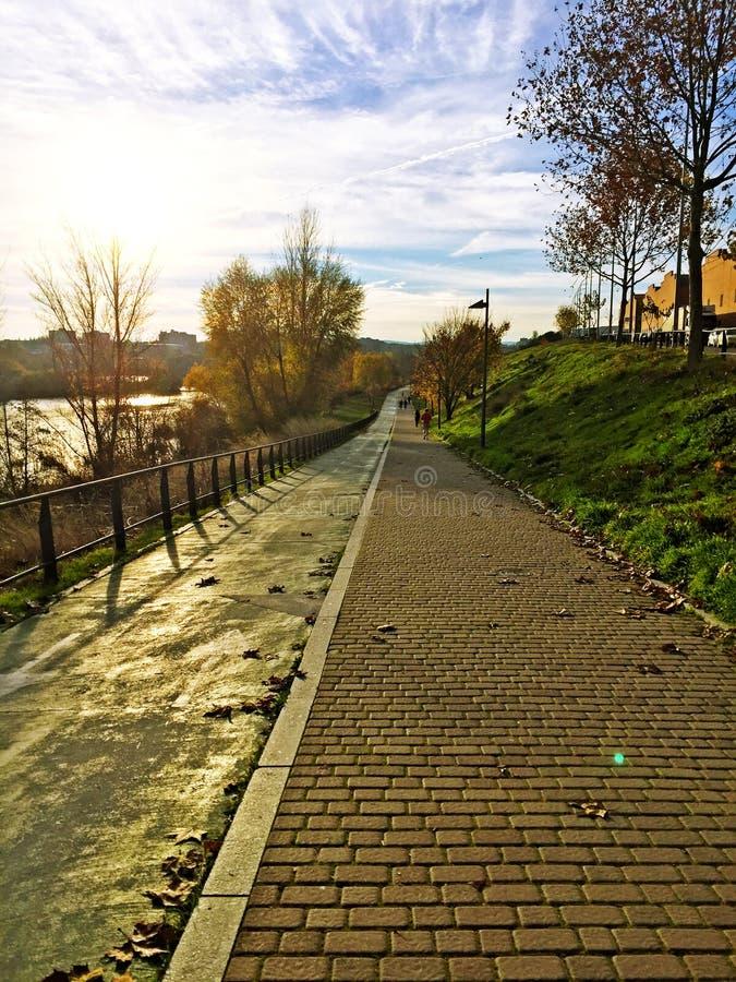 Un parc près de rivière de Tormes à Salamanque en automne photos libres de droits
