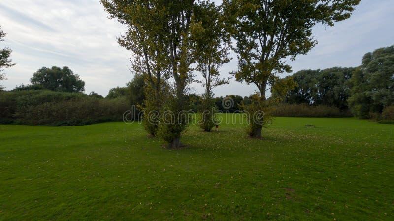 Un parco alla fine di settembre immagine stock
