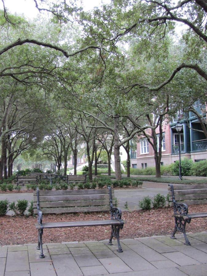 Un parque sereno para relajarse fotografía de archivo