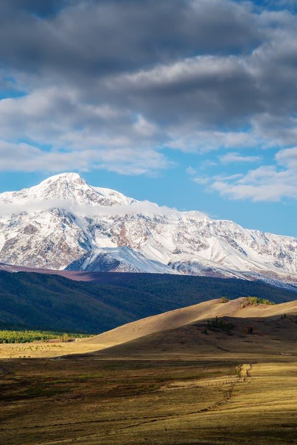 Un pascolo recintato nella steppa curai fotografie stock