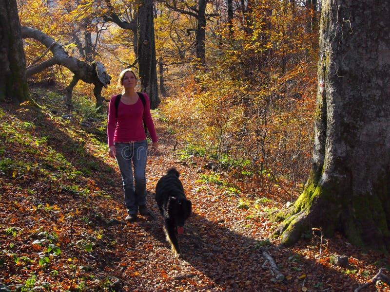Un paseo con un amigo fotos de archivo