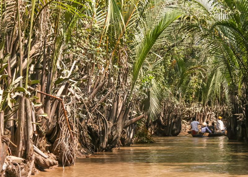 Un paseo en el delta del Mekong fotografía de archivo libre de regalías