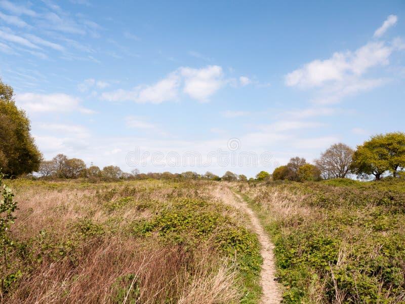 Un paysage luxuriant gentil a tiré de la terre d'arbuste dans des WI de campagne d'essex photographie stock