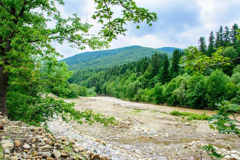 Un paysage merveilleux dans les Carpathiens avec une rivière sur le fond photos libres de droits