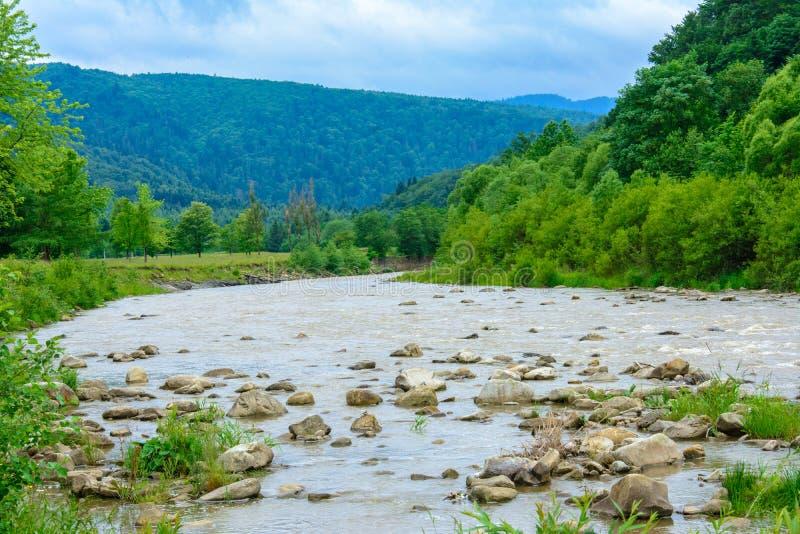 Un paysage merveilleux dans les Carpathiens avec une rivière sur le fond image stock