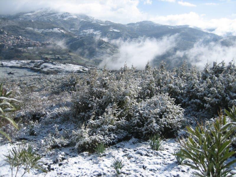 Un paysage neigeux de campagne avec des montagnes image libre de droits