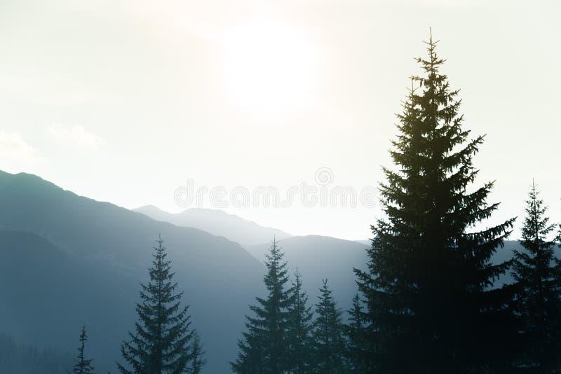 Un paysage rêveur et flou de montagnes près de coucher du soleil Flasre de Sun et regard brumeux dans des tons bleus Paysage de m photographie stock