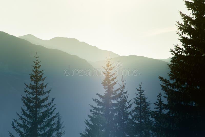 Un paysage rêveur et flou de montagnes près de coucher du soleil Flasre de Sun et regard brumeux dans des tons bleus Paysage de m image libre de droits