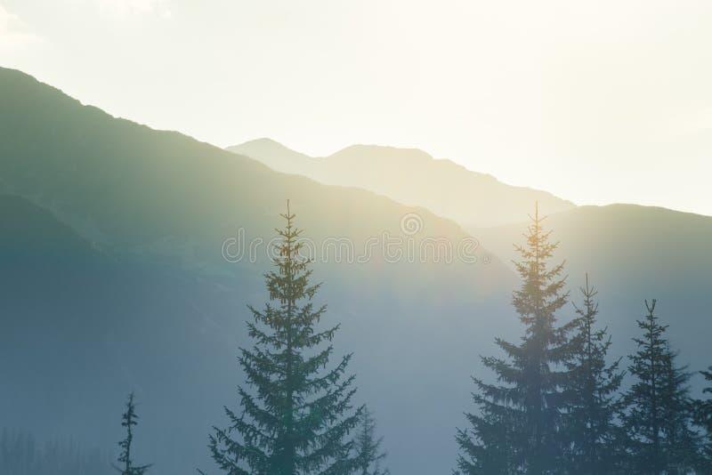 Un paysage rêveur et flou de montagnes près de coucher du soleil Flasre de Sun et regard brumeux dans des tons bleus Paysage de m images libres de droits