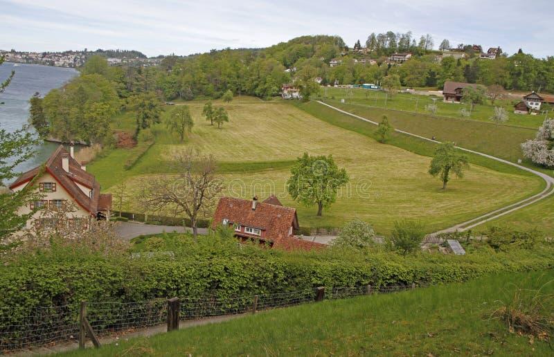 Un paysage rural tir? sur la banque de la luzerne de lac photographie stock