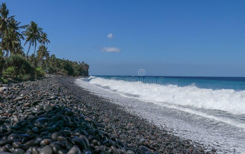 Un Pebble Beach vierge sans fin avec les palmiers et la végétation tropicale sur l'île de Bali en Indonésie Les vagues lavent la  photos libres de droits
