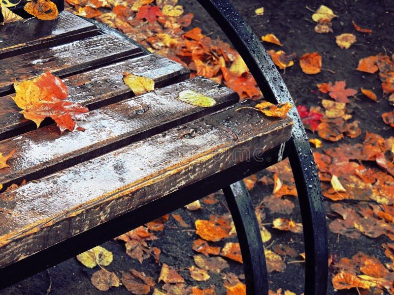 Un pedazo de otoño imagen de archivo