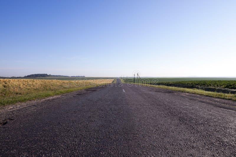 Un pequeño camino pavimentado imagen de archivo libre de regalías