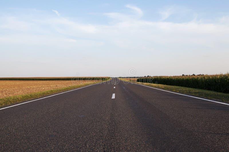 Un pequeño camino pavimentado foto de archivo libre de regalías