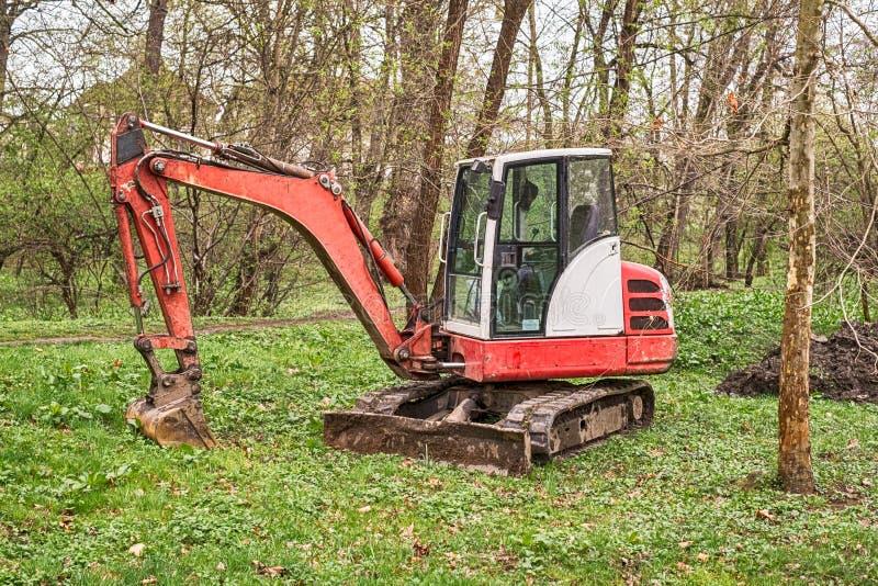 Un pequeño excavador rojo en el bosque fotografía de archivo libre de regalías