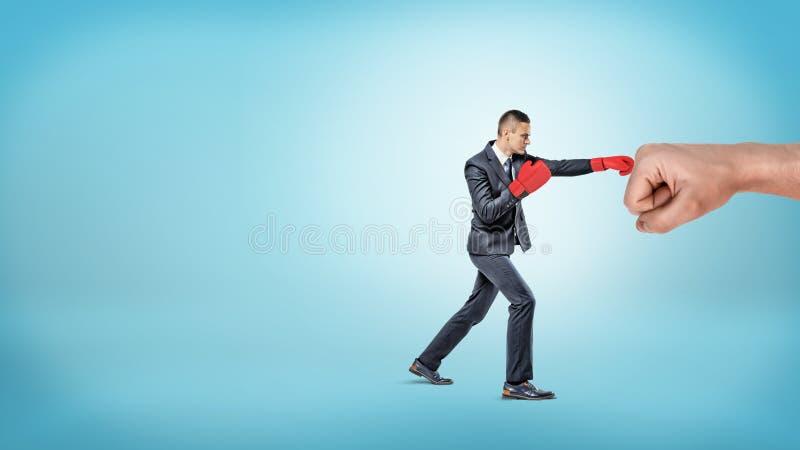 Un pequeño hombre de negocios en guantes de boxeo rojos perfora un puño masculino gigante en fondo azul fotografía de archivo