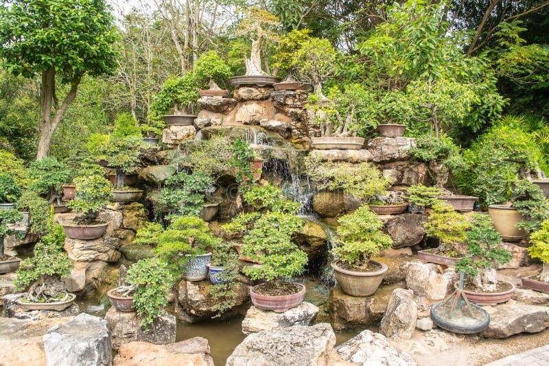 Un pequeño jardín o bonsai del árbol adornado maravillosamente imagenes de archivo