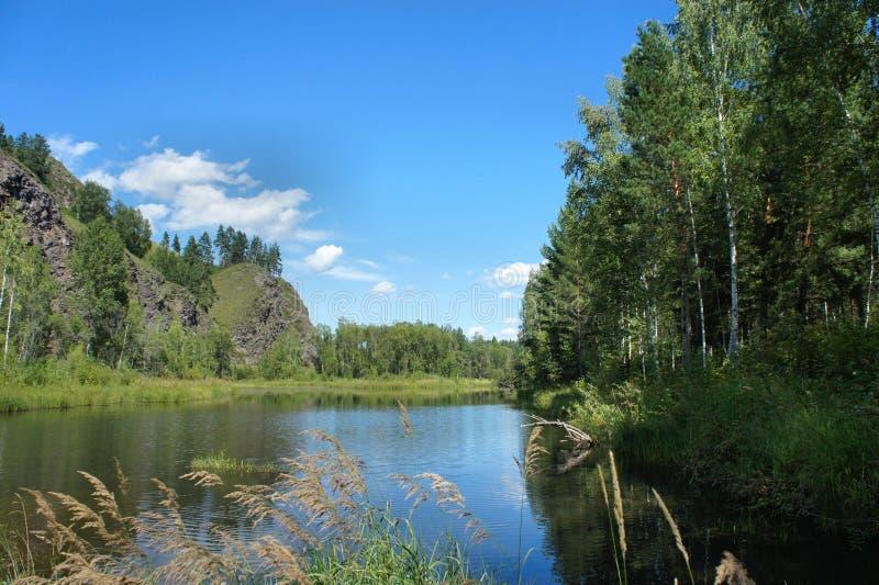 Un pequeño lago del bosque El paisaje pintoresco Khakassia imagenes de archivo