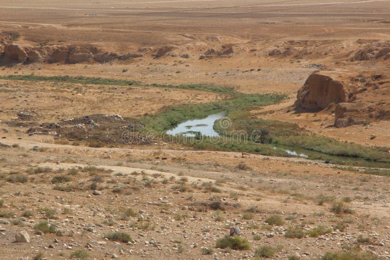 Un pequeño lecho de un río seco en el desierto del Néguev, Israel imagen de archivo libre de regalías