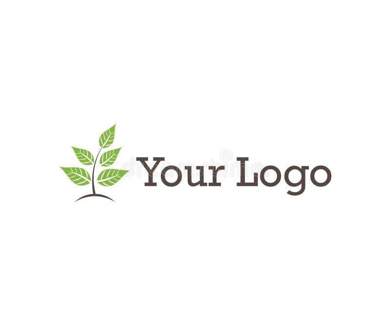 Un pequeño logotipo simple de la planta ilustración del vector