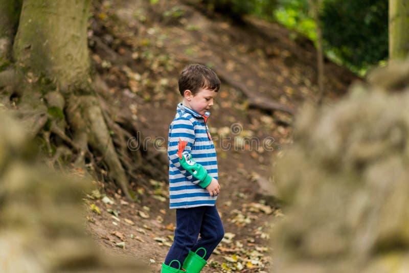 Un pequeño muchacho tiene una aventura a través de un bosque imagenes de archivo