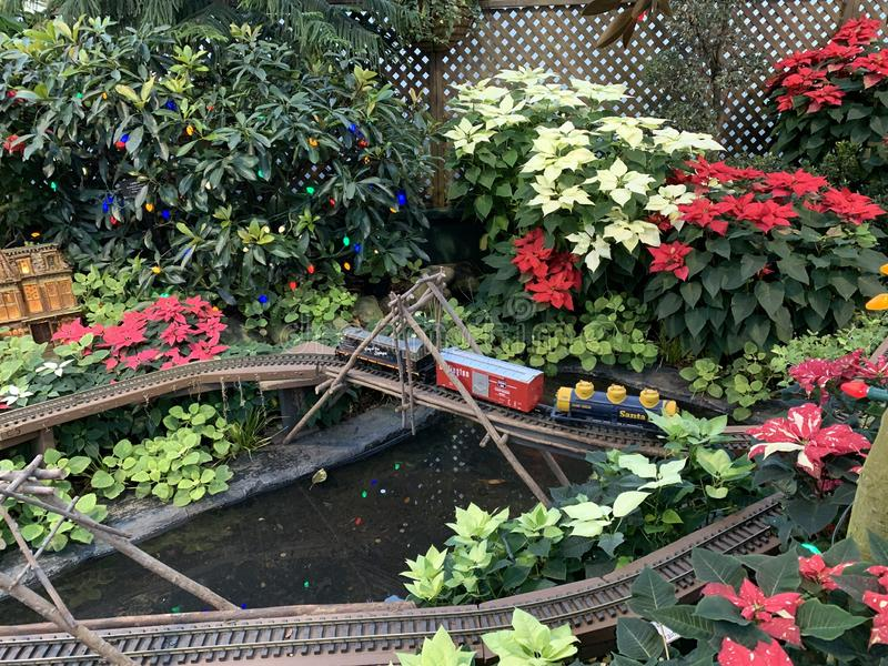 Un pequeño tren que ir y a través de las flores en la casa de la flor fotografía de archivo libre de regalías