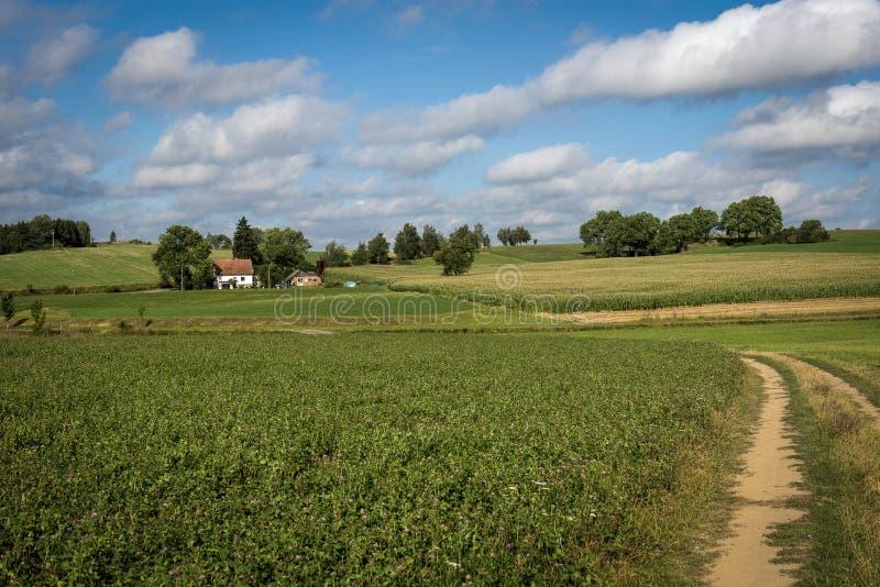 Un percorso attraverso i prati verdi ad una piccola azienda agricola fotografie stock