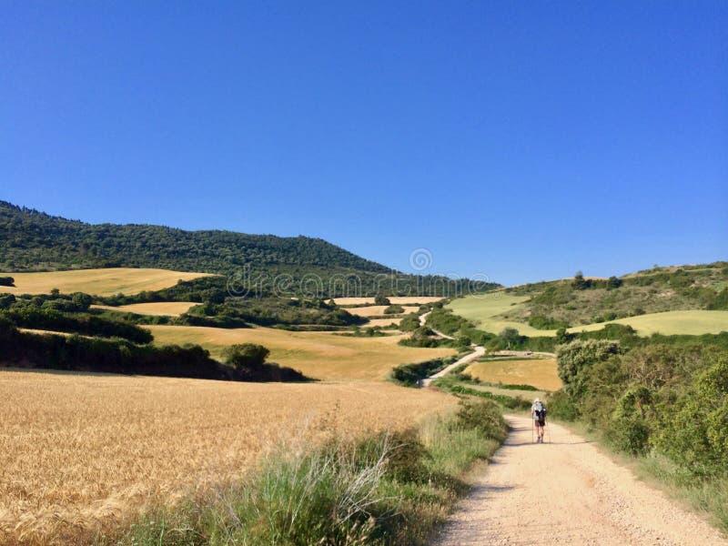Un peregrino solo en el Camino de Santiagoe, manera de atasco del santo imagenes de archivo