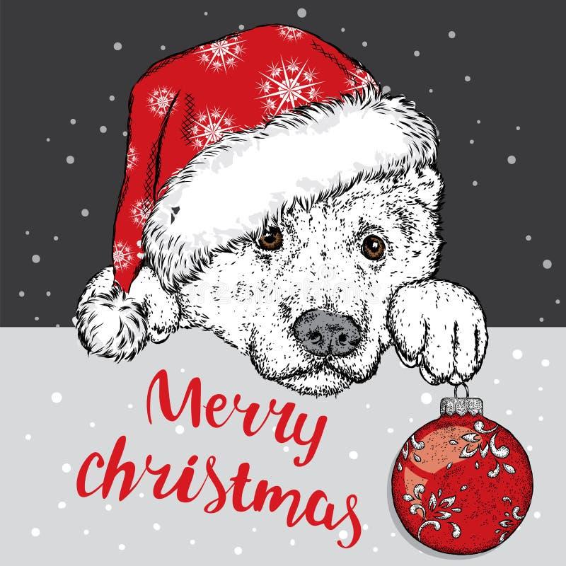 Un perro hermoso en un sombrero de la Navidad y una bola de la Navidad Vector el ejemplo para una postal o un cartel Perrito cria stock de ilustración