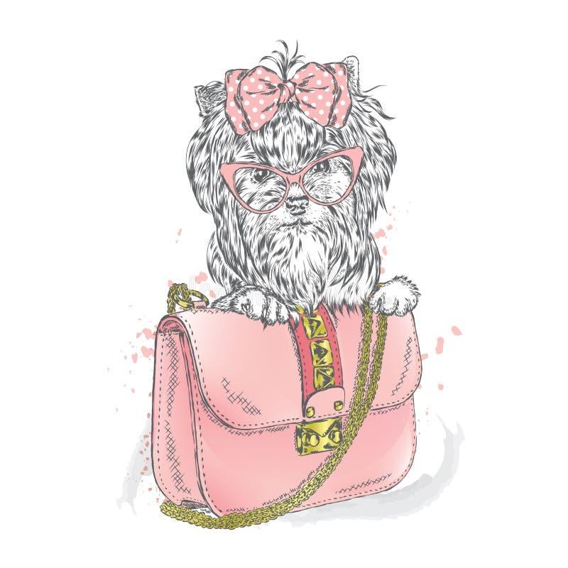 Un perro hermoso y un bolso hermoso embrague stock de ilustración