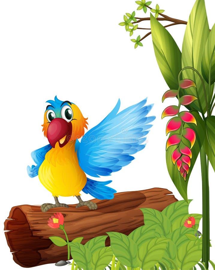 Un perroquet coloré illustration stock
