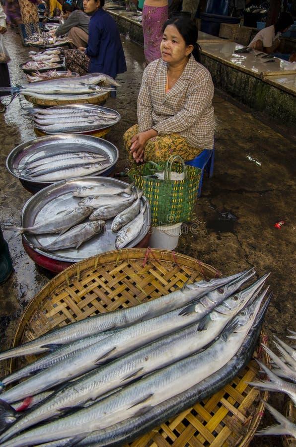 Un pescado grande en MYANMAR - BIRMANIA foto de archivo libre de regalías