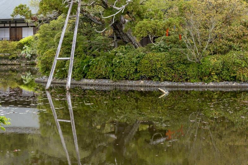 Un pescado grande salta en el agua del lago, templo de Ryoan-ji, Kyoto, Japón foto de archivo libre de regalías